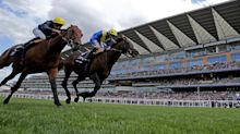 Horse Racing: Your horse-by-horse guide to the Juddmonte International at York