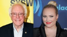 Meghan McCain calls a possible Trump vs. Sanders race 'the oldest, whitest extremist battling the other oldest, whitest extremist'