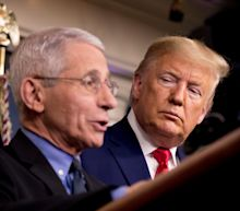 'He's answered that question.' Trump interrupts when reporter asks Fauci about hydroxychloroquine