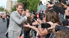 Prince Harry and Prince William surprise fans waiting outside Windsor Castle