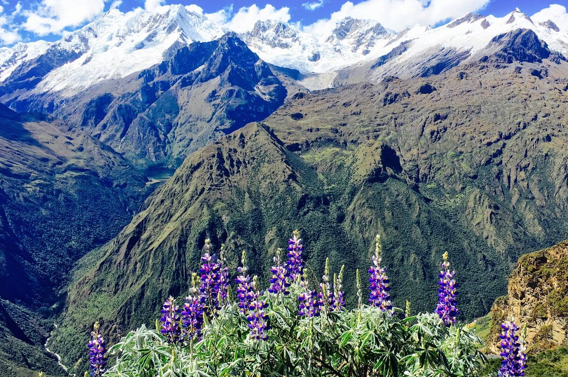 """<p><a href=""""https://www.lonelyplanet.com/peru/choquequirao"""" rel=""""nofollow"""" title=""""https://www.lonelyplanet.com/peru/choquequirao"""">Choquequiro</a>,Peru's 'second lost city', took the top spot in Lonely Planet's top regions to visit in 2017.Remote and spectacular, the ruins of Choquequirao are often described as a mini–Machu Picchu, but without the crowds. """"This the last Inca refuge from the conquistadors, and there's a growing traveller buzz to see it before a planned cable car opens 2017, which will glide up to 3000 visitors a day to the ruins in just 15 minutes,"""" says Lonely Planet.But for now, you can enjoy a four-day trek in Inca footsteps and have a taste of Machu Picchu all to yourself. You'll only encounter a couple of visitors and the odd archaeologist...</p>"""