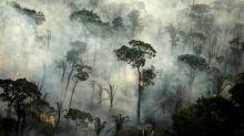 Amazon region: Brazil records big increase in fires