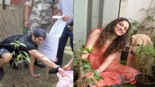 Sushant's Ex girlfriend Ankita Lokhande joins #PlantsForSSR at her house