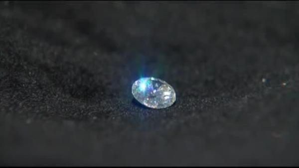 Florida woman swallows diamond at charity event