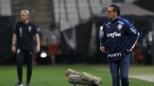 Palmeiras retorna à Liberta invicto no Brasileiro e com título na mala