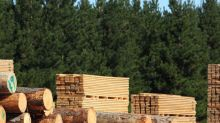 Dividend Investors: Don't Be Too Quick To Buy Acadian Timber Corp. (TSE:ADN) For Its Upcoming Dividend