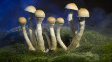 Sustancia presente en los hongos alucinógenos cambia el cerebro de los depresivos