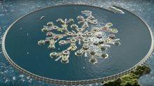 Le créateur de Paypalconstruit une île où les riches seraient débarrassés des politiciens