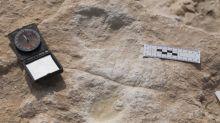 Découverte d'empreintes humaines vieilles de 120 000 ans en Arabie saoudite