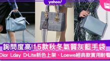 手袋2020|15款灰藍名牌手袋!Dior Book Tote、Celine Belt回頭率超高