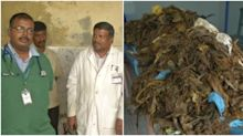 Chennai: Doctors remove a whopping 52 kilos of plastic from a cow's stomach