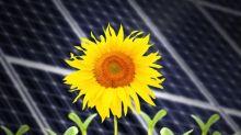 NextEra Energy Partners' $1.3B Buyout to Expand Renewables