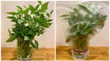 Genius hack forkeeping herbs fresher for longer