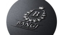 BANGI, Inc. Announces Details for Investor Conference Call