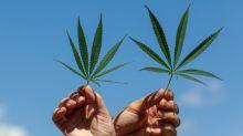 Better Marijuana Stock: Canopy Growth vs. Tilray