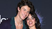 Shawn Mendes and Camila Cabello just got the cutest puppy
