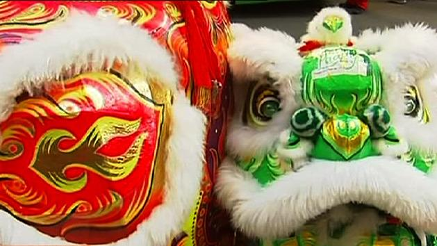 Chinese New Year lights up Sydney