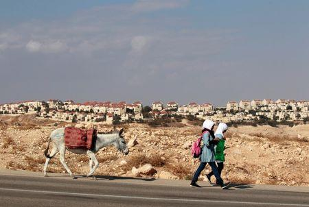 Palestinian schoolgirls walk with a donkey as the West Bank Jewish settlement of Maale Adumim, near Jerusalem, is seen in the background November 13, 2013. REUTERS/Ammar Awad/File Photo