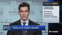 Tesla has burned over $5 billion: Portfolio manager