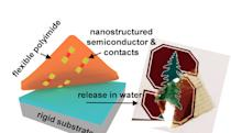 'Atomically thin' transistors could help make electronic skins a reality