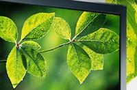 """Consumers don't believe in """"green"""" electronics"""