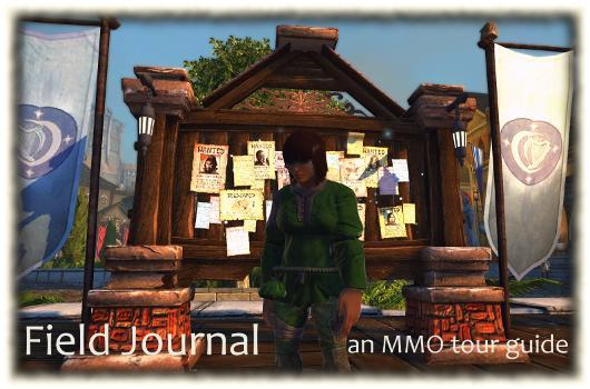 Field Journal: Neverwinter gonna let you down