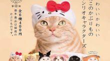 一秒變成凱蒂貓 貓頭套扭蛋日本必搶代購旺