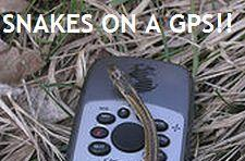 Metal Gear to support GPS