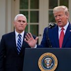 Trump advisors are telling him to drop Pence for a Black or female VP in a potential 2024 run, report says