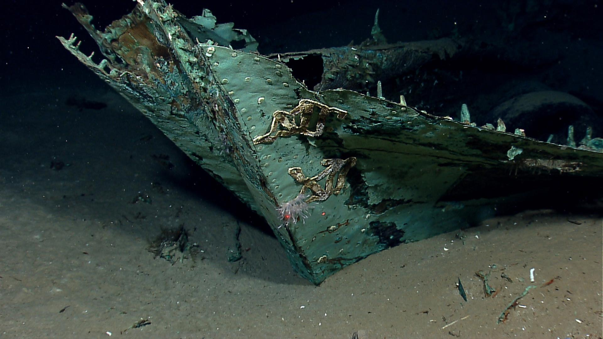 This photo provided by the NOAA Okeanos Explorer Program shows oxidized copper hull sheathing and possible draft marks visible on the bow of a wrecked ship in the Gulf of Mexico about 170 miles from Galveston, Texas. Officials with Texas A&M University at Galveston and Texas State University say the recovery expedition of the two-masted ship that may be 200-years-old, concluded Wednesday, July 24, 2013. They've been able to recover some items like ceramics and bottles, including liquor bottles, and an octant, a navigational tool. Other items spotted among the wreckage are muskets, swords, cannons and clothing. (AP Photo/NOAA Okeanos Explorer Program)