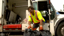 Grass clippings will be picked up at the curb this summer, council says