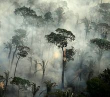 Amazon region: Brazil records big increase in fires