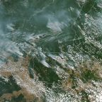 Fires in Amazon rainforest up more than 80% this year, scientists warn