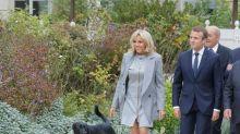 Le chien de Macron urine sur une cheminée de l'Elysée