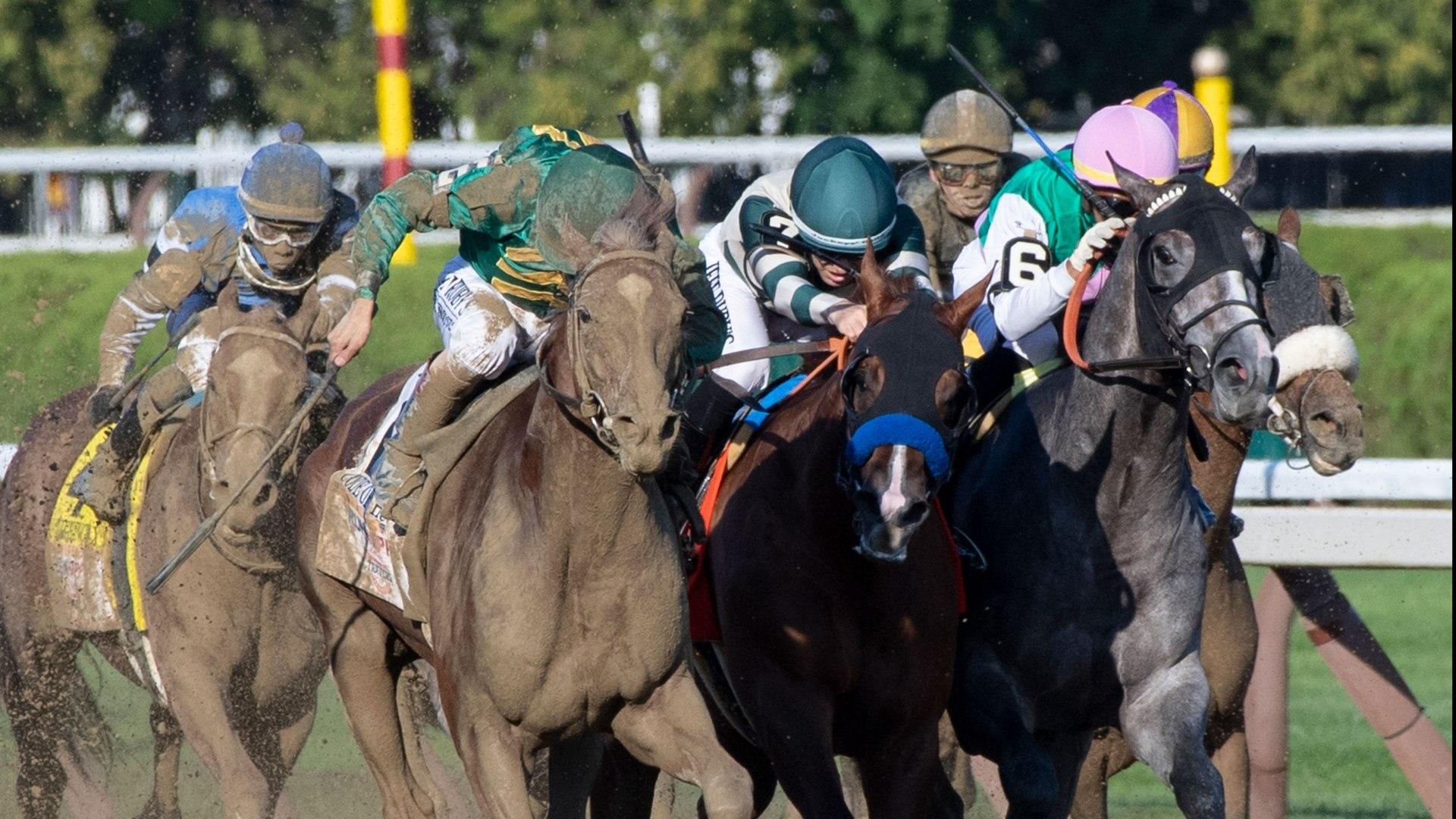 Breeders cup betting challenge 2021 results ironman betting odds game 7