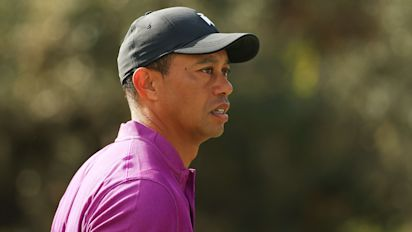 Tiger told cops he didn't remember driving