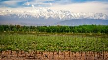 Mendoza guide: Where to eat, drink, shop and stay in Argentina's wine capital