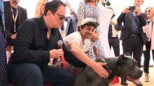 Tarantino's Hollywood hound takes home Palm Dog award