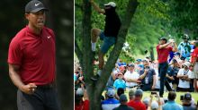 Golf world goes bonkers as Tiger Woods almost wins 15th major
