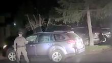 Mit einem beherzten Schlag: Sheriff befreit Bär aus Auto