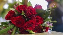 Florist als Beruf zieht nicht mehr Branche will sich anstrengen