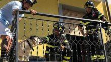 Vittorio Brumotti salva un cane: il padrone lo ha lasciato sul balcone