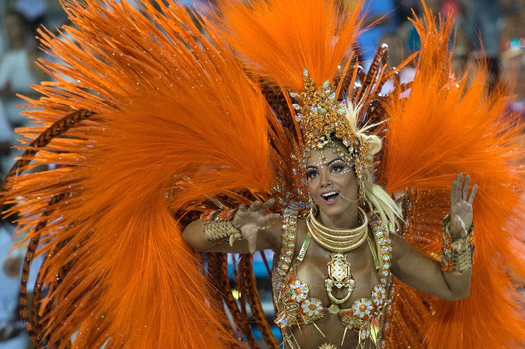 More than five million people are expected to attend this year's carnival in Rio de Janeiro (AFP Photo/Christophe Simon)
