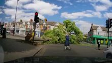 Collapsing tree narrowly misses pedestrians at junction