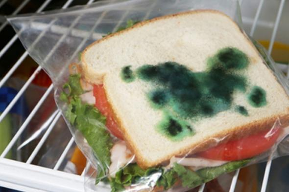 """<p>Are you sick of your packed lunch going missing from the office fridge? Well those horrors could soon be a thing of the past with the <a href=""""http://www.perpetualkid.com/anti-theft-lunch-bags.aspx"""" target=""""_blank"""">theft deterrent sandwich bags</a>.</p>  <p>For just $4.99 you can get a plastic sandwich bag with fake mould printed onto it. Those green splodges will mean that no matter how light-fingered your colleagues are, they'll keep their hands off your lunch.</p>"""