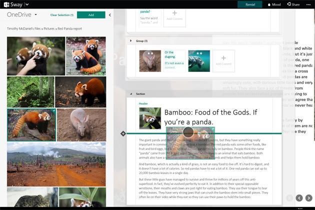 Microsoft's Sway lets you share ideas on the web without any design skills