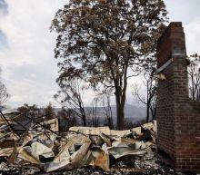 Half of Australians donated to bushfire appeal: survey