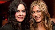 Friends stars Jennifer Aniston and Courteney Cox in plane emergency