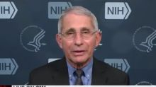 Fauci shoots down false claim only 6 percent of coronavirus deaths are legitimate: 'They are real deaths from COVID-19'