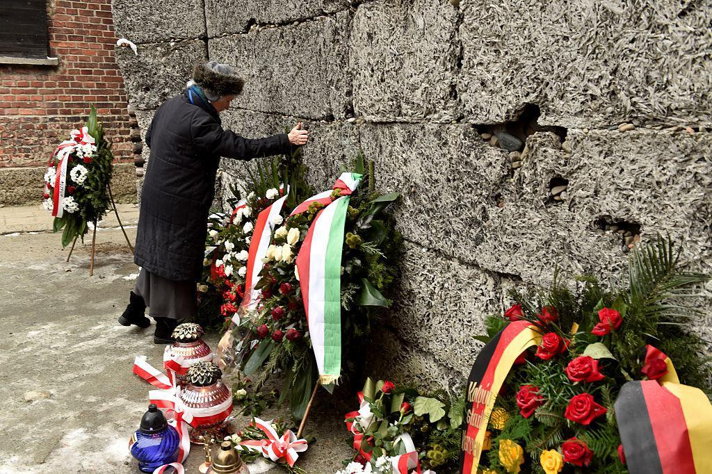 remembrance of the holocaust essay Essays/publications task force for international cooperation on holocaust education, remembrance  of the holocaust in the video clips included with this essay.